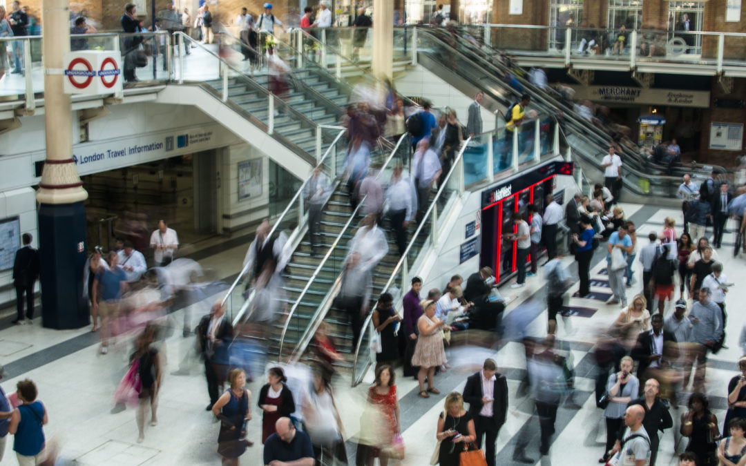 Global Employment Levels Show Signs of Slowing