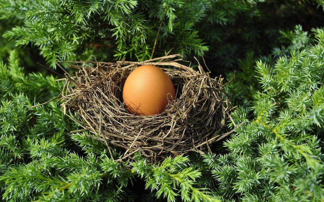 Optimal Retirement Plan Design Can Increase Savings